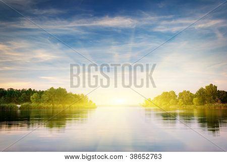 Bosque de río y de la primavera. Composición de la naturaleza.