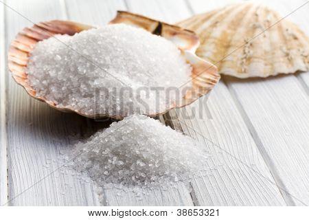 the white crystal salt in seashell