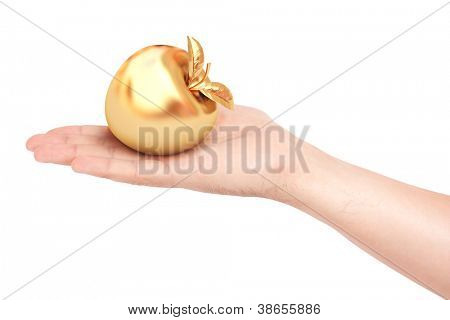 Golden apple in a man's hand. isolated on white background