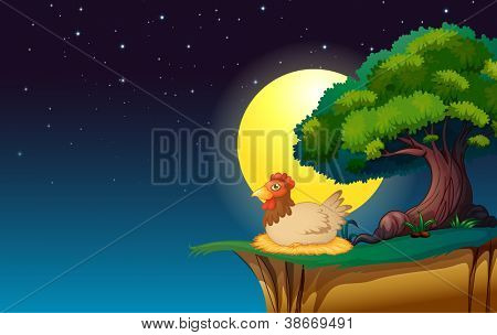 illustration of a hen sitting under the tree in night