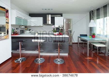 Beautiful modern kitchen in designer house