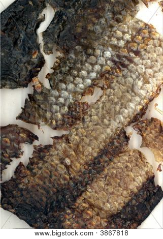Fish Skin Leather