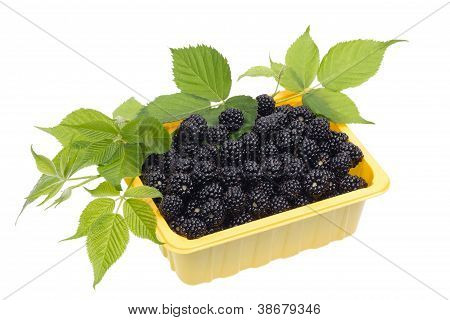 Blackberries In A Yellow Plastic Container