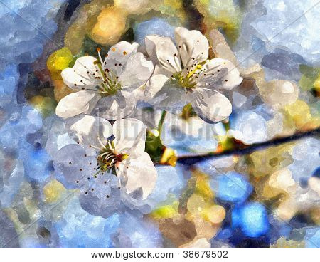 Blossoming Cherry And Morning Sunlight Watercolor