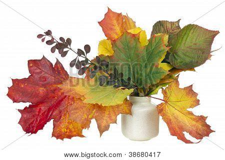 Minimalistic  Bouquet  - Autumn Maple Leaves