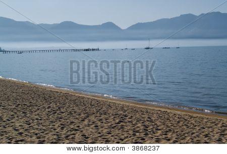 Foggy Lake Shore