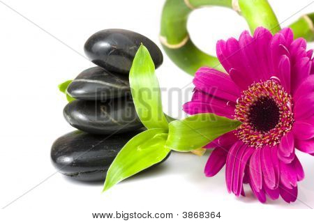 Balancing Pebbles With Bamboo And Daisy Flower