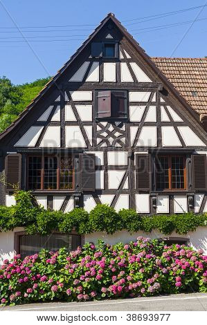 Andlau (alsace) - House