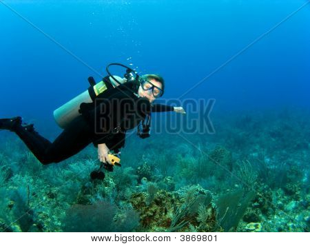Horizontal Scuba Diver With Copy Space