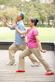 stock photo of tai-chi  - Senior Chinese Couple Doing Tai Chi In Park - JPG