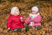 picture of leaf-blower  - Children - JPG