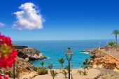 stock photo of canary  - Beach Playa Paraiso costa Adeje in Tenerife at Canary Islands - JPG