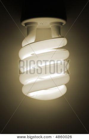 Economical Light Bulb