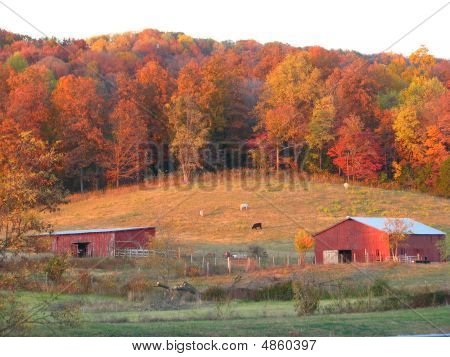 Country Barn On Hillside