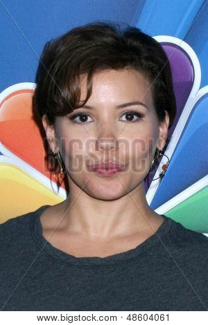 LOS ANGELES - JUL 27:  Justina Machado at the NBC TCA Summer Press Tour 2013 at the Beverly Hilton Hotel on July 27, 2013 in Beverly Hills, CA