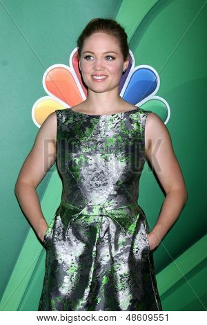 LOS ANGELES - JUL 27:  Erika Christensen at the NBC TCA Summer Press Tour 2013 at the Beverly Hilton Hotel on July 27, 2013 in Beverly Hills, CA