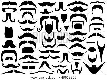 Conjunto de diferentes bigotes