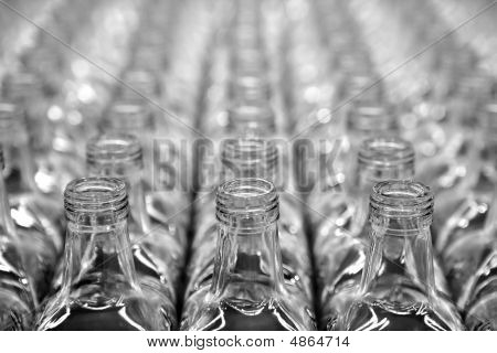 Glass Square Transparent Bottle Rows