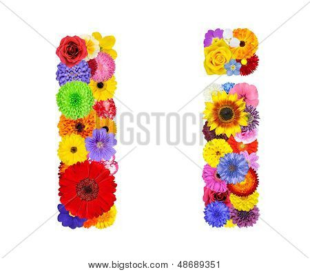 Flower Alphabet Isolated On White - Letter I