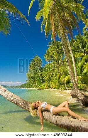 Exotic Hideaway Hot Blonde