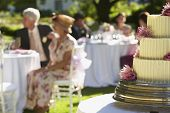 picture of three tier  - Closeup of wedding cake with guests sitting at tables in background - JPG
