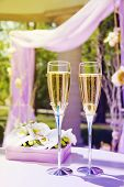 stock photo of gazebo  - Beautiful wedding gazebo with flower arrangements and Champagne - JPG