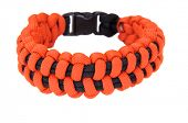 picture of paracord  - 550 Parachute cord  - JPG