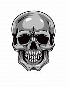 Cartoon Vector Skull . Hand drawn. Eps8