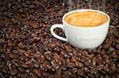 stock photo of latte coffee  - Cup of Morning Espresso in Dark Roasted Coffee Beans background steaming with frothy crema on top - JPG