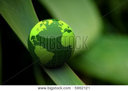 Green Earth On Grass