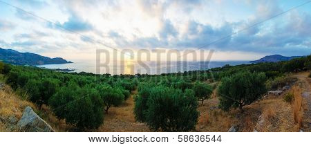 Wide view of a Cretan landscape, island of Crete, Greece