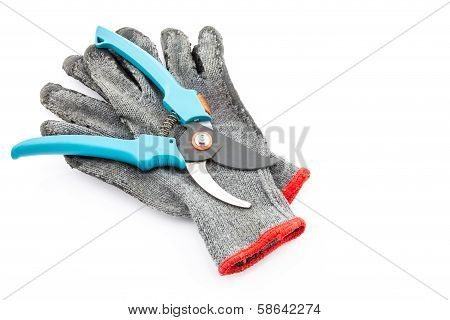 Pruning Shears And Gardening Worn Gloves