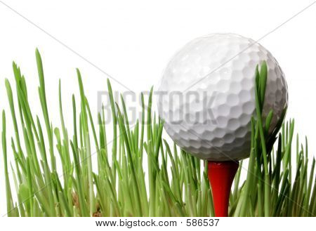 Golf Ball Bin Grass