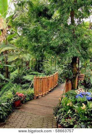 Vancouver Conservatory trail bridge