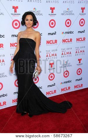 Jael De Pardo at the 2013 NCLR ALMA Awards Arrivals, Pasadena Civic Auditorium, Pasadena, CA 09-27-13