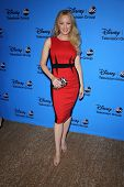 Wendi McLendon-Covey at the Disney/ABC Summer 2013 TCA Press Tour, Beverly Hilton, Beverly Hills, CA