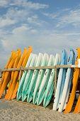 Pile Of Kayaks