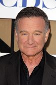 Robin Williams at the CBS, Showtime, CW 2013 TCA Summer Stars Party, Beverly Hilton Hotel, Beverly H