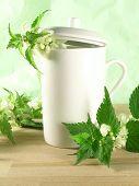 Herbal Tea - Nettle poster