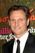 Tony Goldwyn at the Wallis Annenberg Center For The Performing Arts Inaugural Gala, Wallis Annenberg