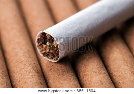 Tobacco In Cigarette On Dark Cigarettes