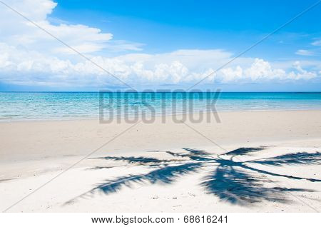 Shadow Of Palm Tree Over Tropical White Sand Beach