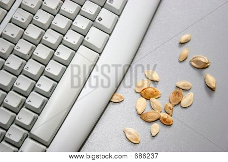 Keyboard With Seed