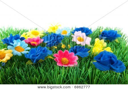 Green Grass With Colorful Flowers