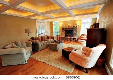 Upscale Living Room Interior