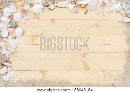 Shell Wood Background