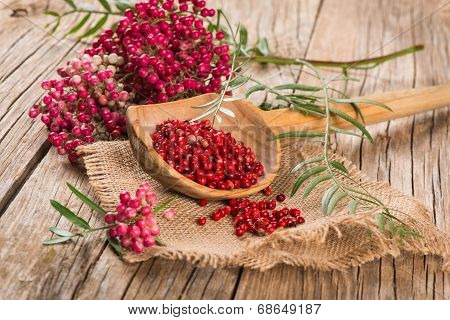 Red Peppercorns On A Twig And Dry In A Wooden Spoon