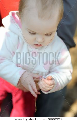 Little Girl Touching Hepatica Flower
