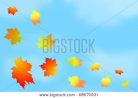 Frame of autumn leaves against the sky.