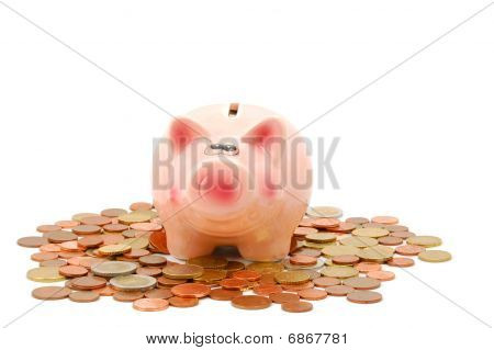 Piggy Bank And Money